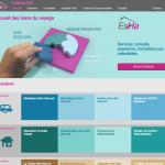 Capture écran de la page d'accueil du site guichetgdv.fr en production.